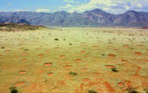 Lingkaran Peri/Fairy Circle di Namibia